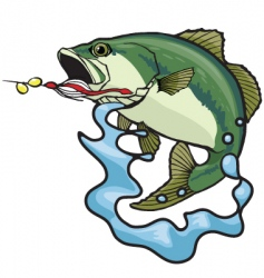 fighting bass vector image vector image