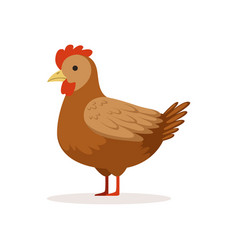 Brown hen poultry breeding vector