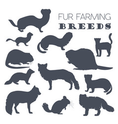 fur farming flat design vector image