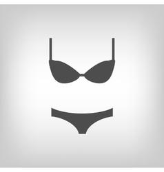 Grey lingerie vector