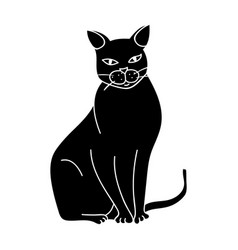 chartreux icon in black style isolated on white vector image vector image