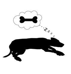 Dog dreams of feeding vector image