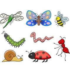 small animal vector image