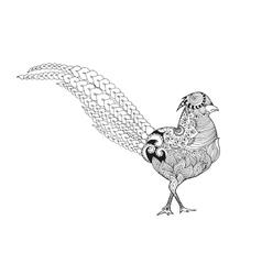 Zentangle stylized pheasant vector image vector image