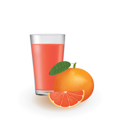 grapefruit juice in a glass vector image