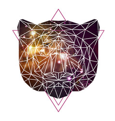 Abstract polygonal tirangle animal tiger vector