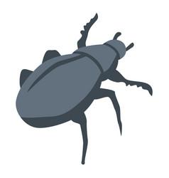 Black scarab beetle icon isometric style vector