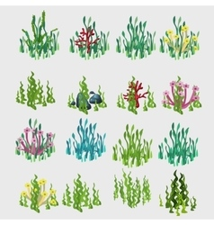 Icons grass with colorful flowers and coral vector