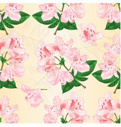 seamless texture light pink rhododendron twig vector image