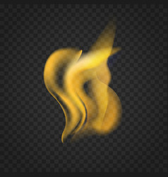transparent realistic fire flames isolated on dark vector image