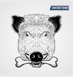 Vild boar vector
