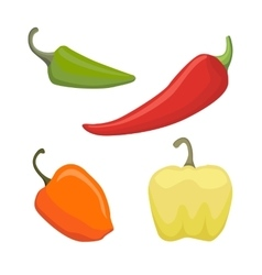 Set of Colored Yellow Green Orange and Red vector image