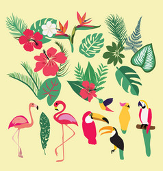 tropical set of tropical elements vector image