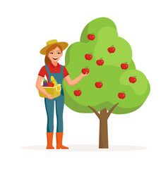 woman farmer near apple tree holding ripe red vector image vector image