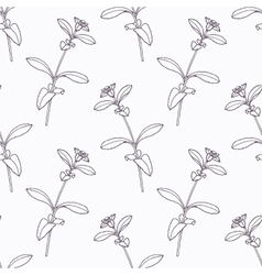 Hand drawn stevia branch outline seamless pattern vector image
