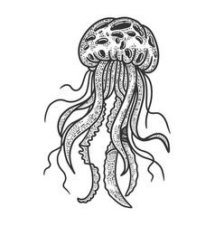 Jellyfish sketch vector