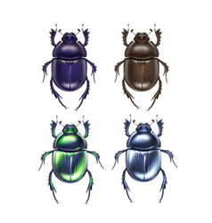 Set scarab beetles vector