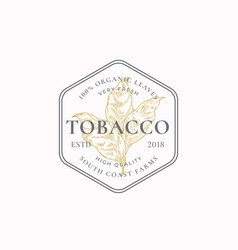 Tobacco leaf abstract sign symbol or logo vector