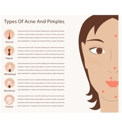 Types acne and pimples vector