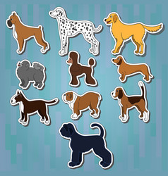 set of cartoon dog breeds vector image