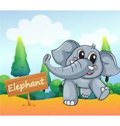 A baby elephant beside wooden board vector