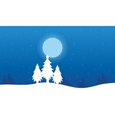 At night spruce christmas landscape vector