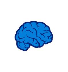 blue brain abstract logo concept logo icon vector image
