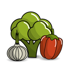 Broccoli garlic and red pepper vegetable icon vector