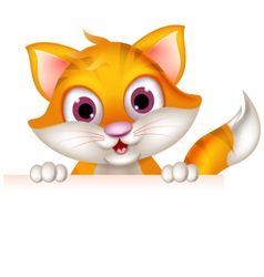 cute cat cartoon holding blank sign vector image