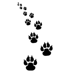 footprints dogs 4 vector image