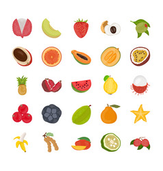 Fruit flat icon pack vector