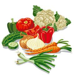 Harvest vegetables vector