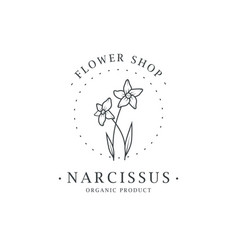 narcissus flower logo for spa and beauty salon vector image