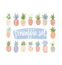 bundle of hand drawn pineapples of different color vector image