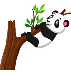 Cartoon panda climbing tree vector