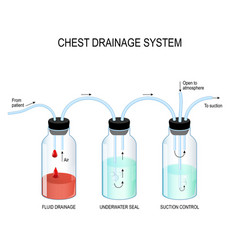 chest drainage system vector image