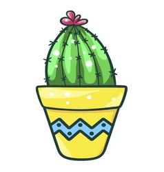home cactus fleshy green succulent decorative vector image