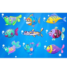 Nine colorful fishes under the sea vector image