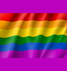 Rainbow lgbt waving flag vector