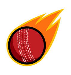 sport ball fire cricket vector image
