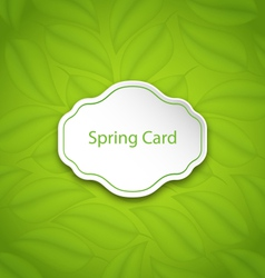 Spring Card on Eco Pattern with Green Leaves vector image