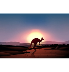 A sunset at the desert with a kangaroo vector image vector image