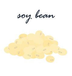soy bean vegetarian ingredient food vector image vector image