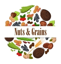Nutritious nuts and grains in round shape emblem vector image