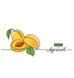Apricot one line drawing art vector