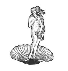 Birth venus sketch engraving vector