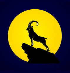 Ibex standing on cliff mountain goat vector