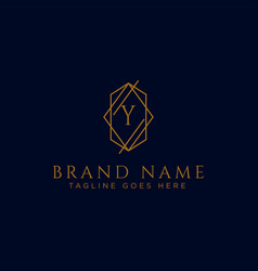 Luxury logotype premium letter y logo vector