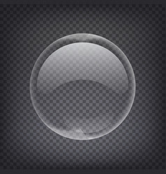 Soap water bubbles transparent isolated vector