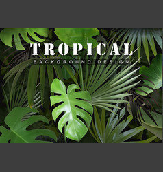 Tropical background with jungle plants vector